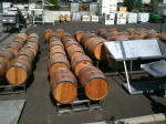 Pretty barrels all lined up and ready to go.