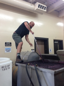 Tim Donahue, our illustrious leader punching down the Syrah to mix the yeast around.
