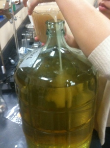 After adding some juice to the yeast we added everything into the carboy.