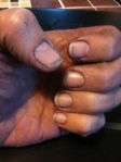 My hands after punching down the four bins of Merlot grapes.