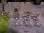 Chardonnay tasting, first of two flights during Wednesday morning's session.