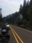 Phillips Creek Forest Fire OR 204