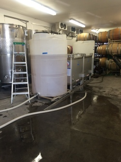 Bottling day for Mustard Seed and Adamant Cellars.