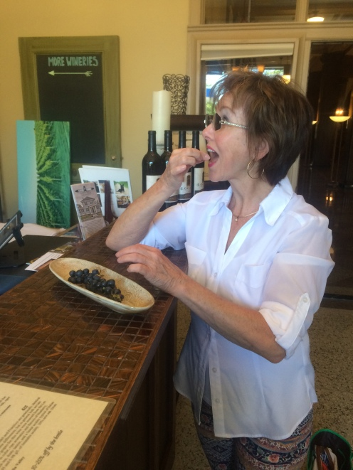 Tasting room Associate, Barb, enjoying vinifera grapes.