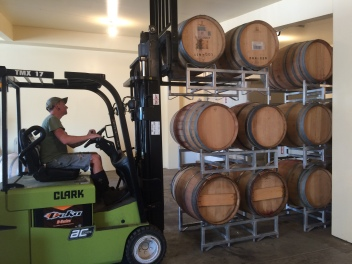 Stacked on the warm side of the production space the wines will finish secondary fermentation, MLF.