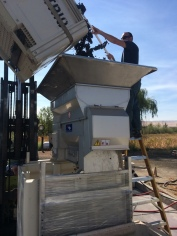 Crushing Mission Hills Sangiovese