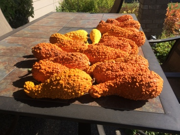 Orange gourds on a tile table.