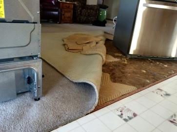 pink carpet removal
