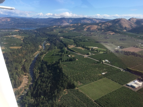 Hood River Gorge, orchards and vineyards