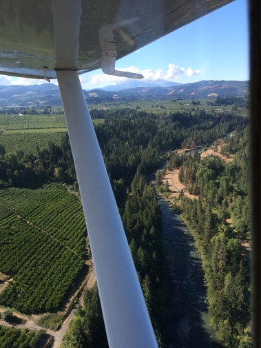 Mt Hood, Hood River Gorge, orchards and vineyards