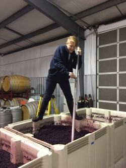 Syrah punch downs as demonstrated by Marlee: step one.