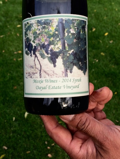 2014 Dayal Estate Vineyard Syrah
